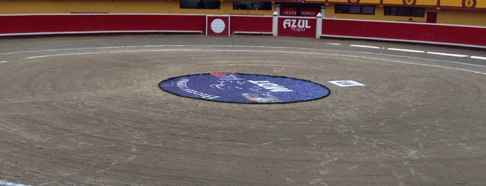 Plaza De Toros El Pinal is one of Franciscoさんのお気に入りスポット.