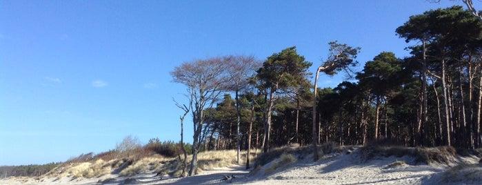 Weststrand is one of Oostzeekust 🇩🇪.