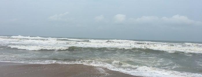 Chandrabhaga Beach is one of India: Odisha.