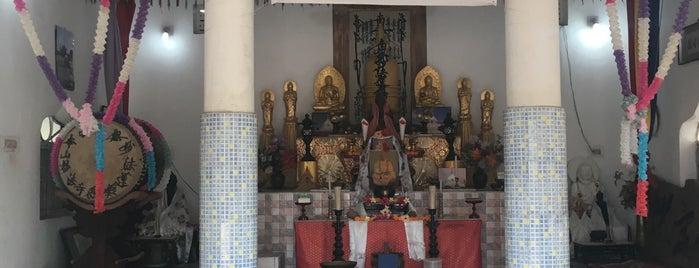 Dhauli Peace Pagoda is one of India: Odisha.