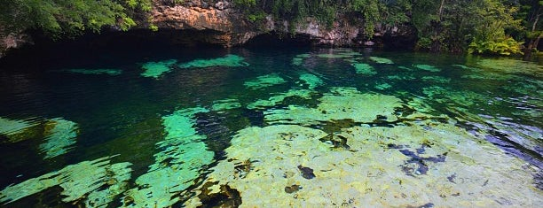 Cenote Azul is one of CrystttalitoFest.