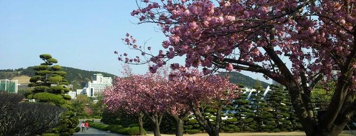 Busan (부산)