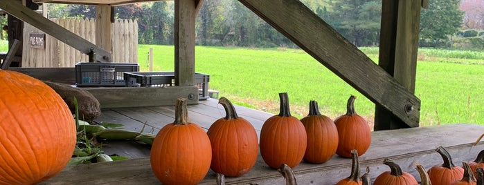 Pikes Farmstand is one of Hamptons.