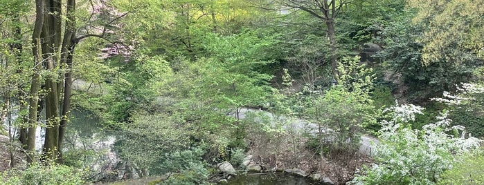 Hallett Nature Sanctuary is one of NYC 4.