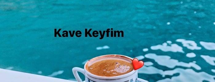 Akvaryum Koyu is one of สถานที่ที่ Gökhan ถูกใจ.