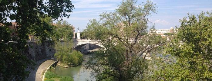 Ponte Principe Amedeo is one of Rome / Roma.