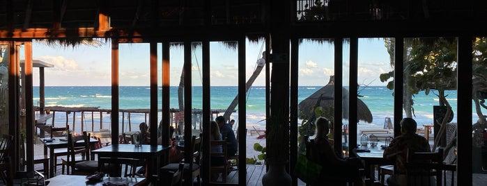 La Zebra Restaurant is one of Mexico.