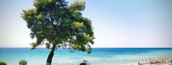 Elani Beach is one of Gamze : понравившиеся места.