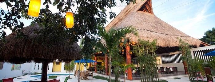 La Vagabunda® Fiesta is one of Lau 👸🏼 : понравившиеся места.