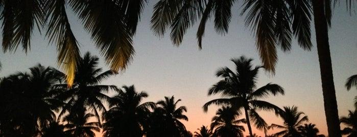 Taj Exotica Hotel Benaulim is one of Goa.