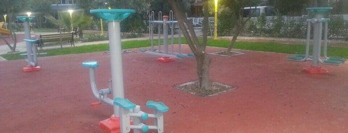 Kuşadası Belediyesi Park ve Bahçeler Müdürlüğü is one of Kuşadası ...