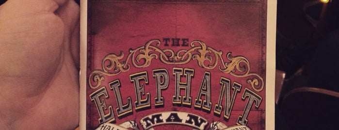 The Elephant Man is one of Lieux qui ont plu à Ryan.