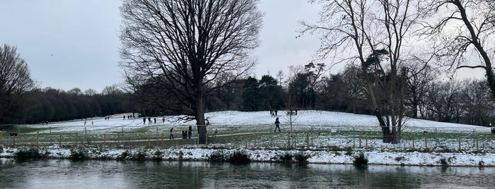 Beckenham Place Park Lake is one of London saved places.