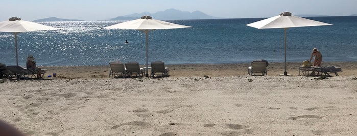 Agios Stefanos Beach is one of Mayteさんのお気に入りスポット.