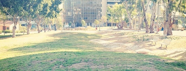 Kiryat Sefer Park is one of Dog friendly in Tel Aviv.