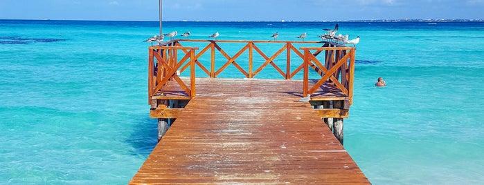 Playa Punta Cancún is one of Locais curtidos por Ana.