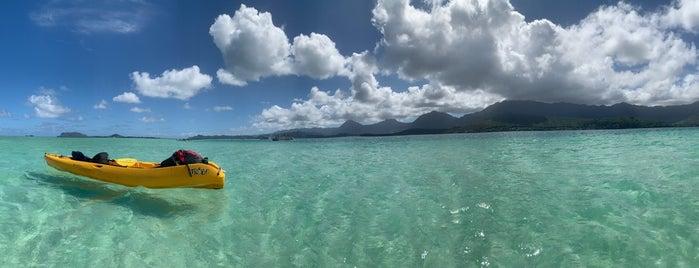 Kaneohe Bay Sandbar is one of Hawaii.