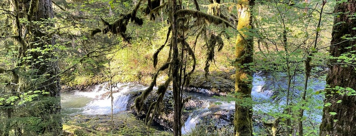 Silver Falls is one of Portland.