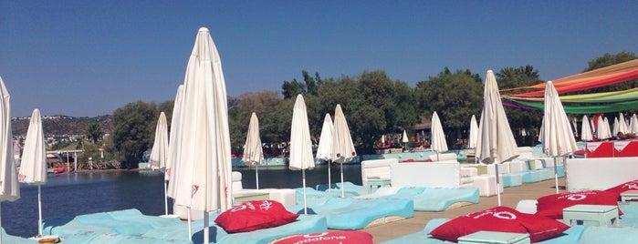 Fink Beach is one of Posti che sono piaciuti a Kapalı.