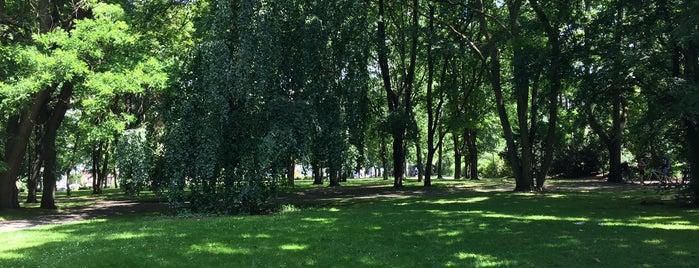 Volkspark Humboldthain is one of Orte, die Kat gefallen.