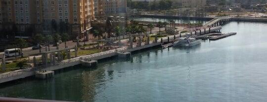 Pier, Holland America, Puerto Rico is one of Orte, die Enrique gefallen.