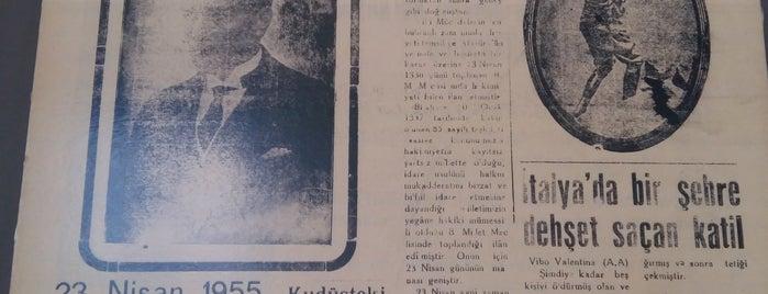 Samsun Kent Müzesi is one of สถานที่ที่ Müzeyyen ถูกใจ.