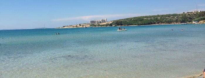 Ali Bostan Plajı is one of Yazlik Mekanlar.