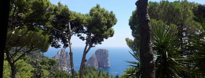 Il Geranio is one of Capri.