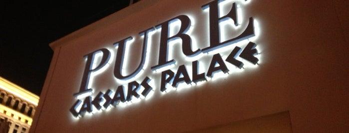 PURE Nightclub is one of Best clubs in Vegas.