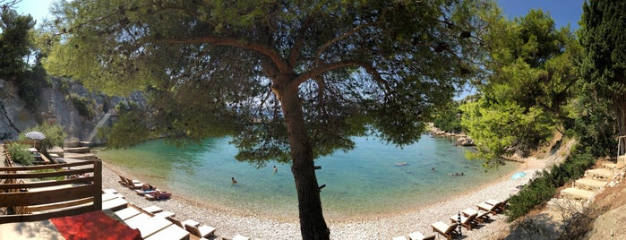 President's Beach is one of Croacia.