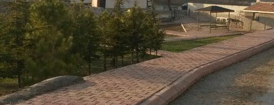 Dadağı Mahallesi is one of Lieux qui ont plu à Hakan.