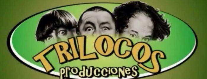 Trilocos Producciones is one of Paola 님이 좋아한 장소.