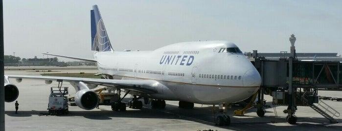 UA850 PEK-ORD / United Airlines is one of Steve 'Pudgy''ın Kaydettiği Mekanlar.