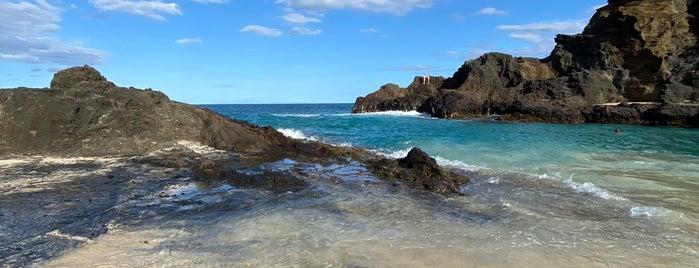 Halona Beach Cove is one of oahu.