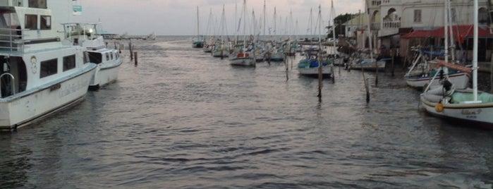 Belize City Swing Bridge is one of Lugares favoritos de Carl.