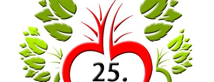 Doğa Uluslararası Çiçekçilik is one of Onediyoさんの保存済みスポット.