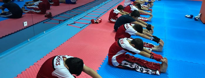 Düzce Doğan Spor Kulübü / Kick Boks is one of สถานที่ที่ Taylan ถูกใจ.