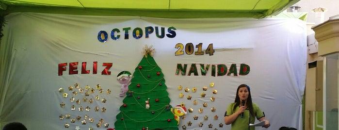 Jardín Infantil Octopus is one of Rodrigo'nun Beğendiği Mekanlar.