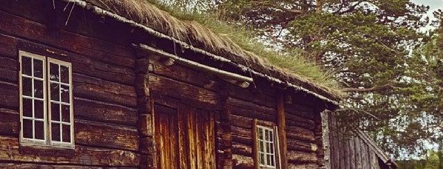 Romsdalsmuseet is one of Norway.
