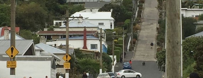 Baldwin Street (The World's Steepest Street) is one of New Zealand: Done.