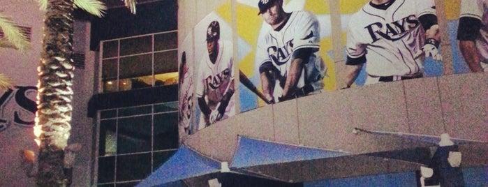 Tropicana Field is one of Baseball Stadiums (MLB)....