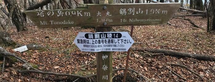 大丸 is one of 丹沢・大山.