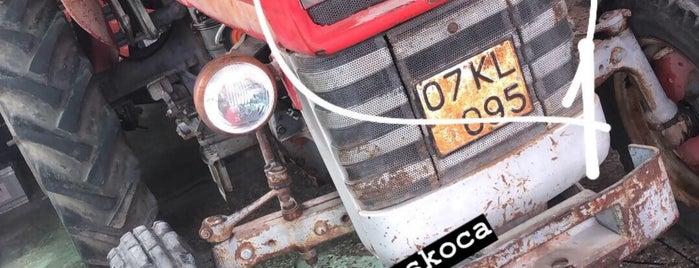 Akif oto elektrik is one of สถานที่ที่ Hüseyin ถูกใจ.