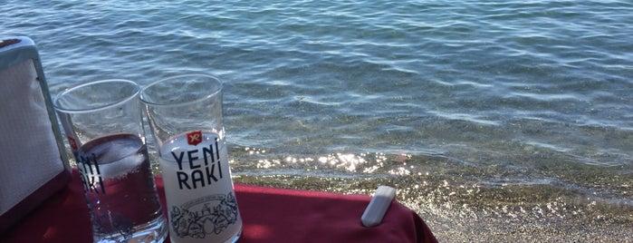 Deniz Restaurant is one of Locais curtidos por 🙋🏻Aydan.