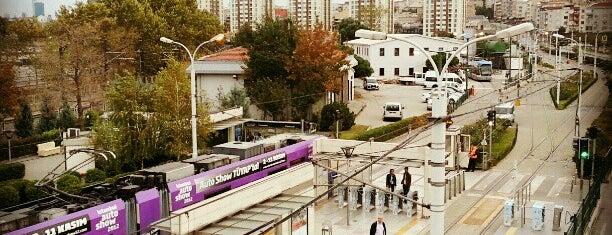 İstanbul Üniversitesi is one of İstanbul'daki Üniversite ve MYO'ların Kampüsleri.