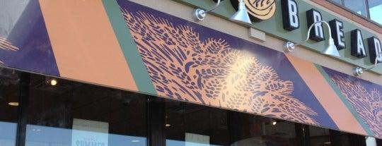 Panera Bread is one of Posti che sono piaciuti a Austin.