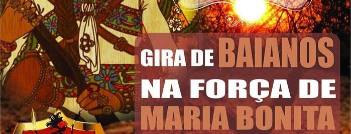 Inzo Kaiango - Rituais e Cultos Afro-Brasileiros is one of Posti che sono piaciuti a Sandra.