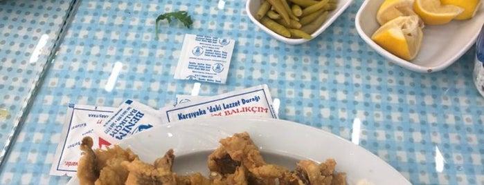 Benim Balıkçım is one of İzmir deki mekanlar.