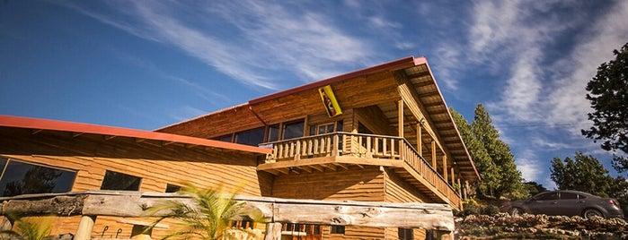 Quieres Restaurant is one of Lugares favoritos de Wayne.