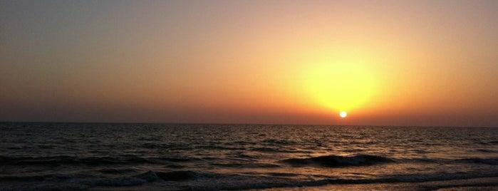 Playa de Costa Ballena is one of Oscarさんの保存済みスポット.